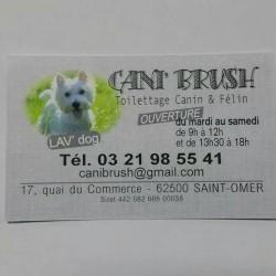 CANI BRUSH