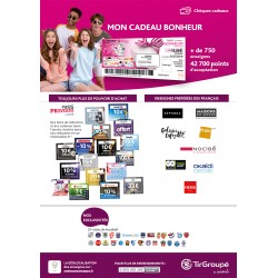 TIR GROUPE by Sodexo - Chèques Cadeau Multi-Enseignes & Sites E-Commerce