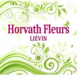 Horvath Fleurs - LIÉVIN
