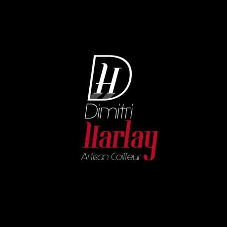 DIMITRI HARLAY - Saint-Omer
