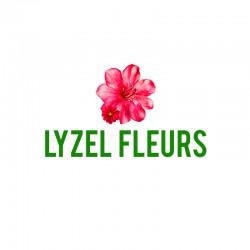 LYZEL FLEURS - Saint-Omer