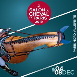 SALON DU CHEVAL - Parc des expositions/Paris nord Villepinte
