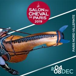 SALON DU CHEVAL - Parc des expositions/Paris nord Villepinte
