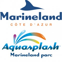 Réduction MARINELAND&AQUASPLASH - E-Billet Différé Wengel