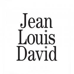 JEAN LOUIS DAVID - Hazebrouck