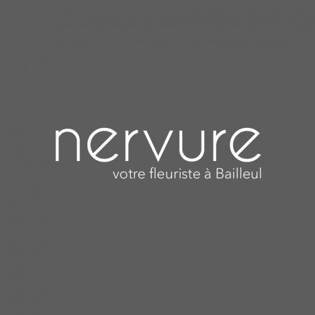 NERVURE - Bailleul