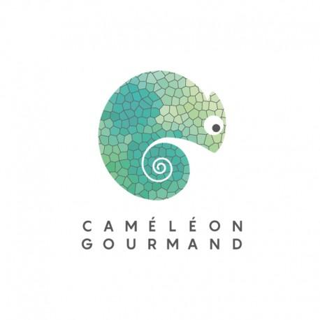 CAMÉLÉON - Bailleul
