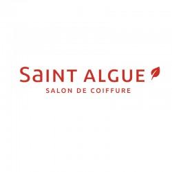SAINT ALGUE - Arras et Beaurains