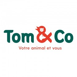 TOM & CO - Saint Martin Boulogne