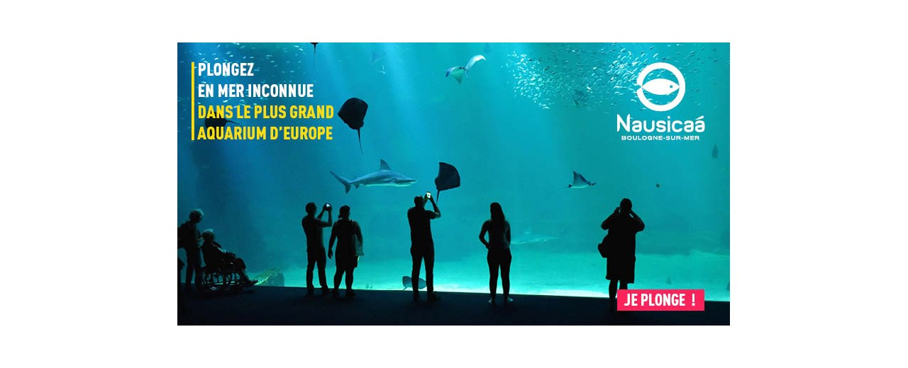NAUSICAA : Plongez dans le plus grand Aquarium d Europe!